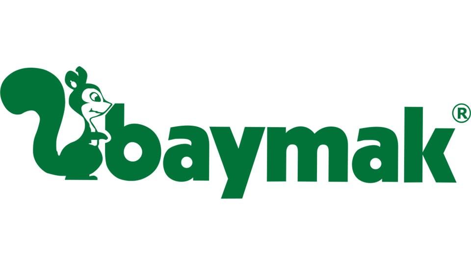 baymak buderus-logo-auer sakarya doğalgaz kombi